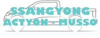 Accessories Ssangyong Actyon and Musso